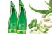 Holika Holika – najbardziej ujmujące i nietypowe kosmetyki – przegląd