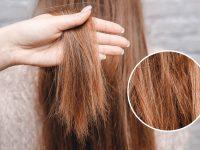 Co na zniszczone włosy – keratyna, proteiny soi, a może żółtko?